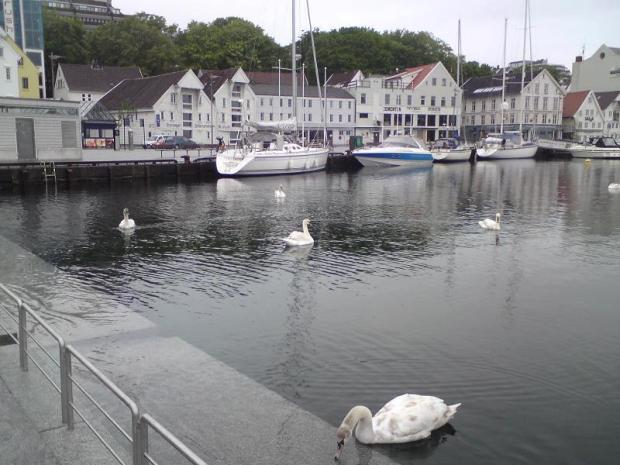 #5secondstrip #Norway #Stavanger