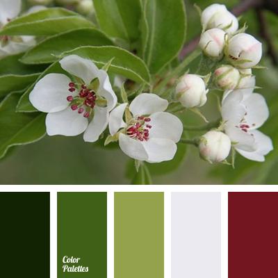 color-palette-2817