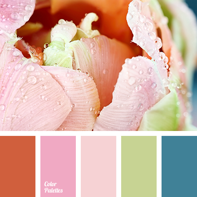 color-palette-2843