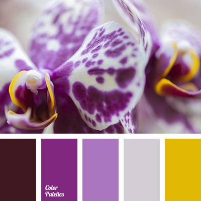 color-palette-2873
