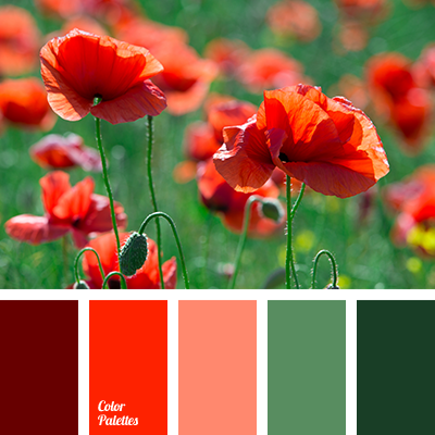 color-palette-2878